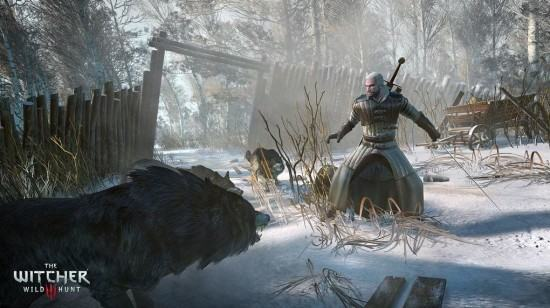the-witcher-3-wild-hunt-pc-1412256136-100